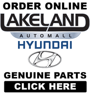 Order Online Genuine Hyundai Parts and Accessories