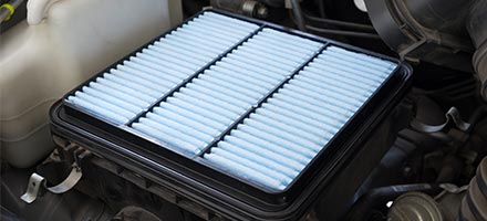 Engine Filter and Cabin Filter