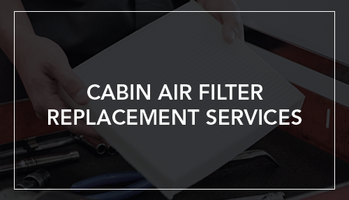 Cabin Air Filter Replacement Services