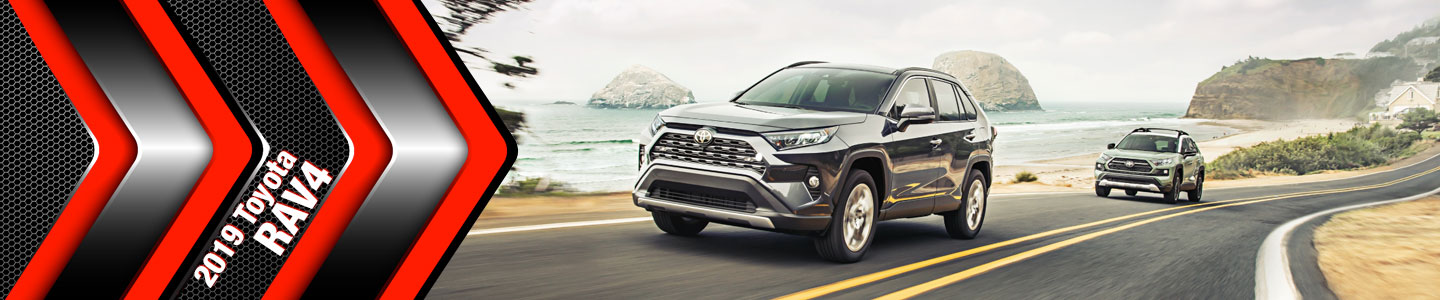 2019 Toyota RAV4 Models for Fort Morgan & Morgan County, CO Shoppers