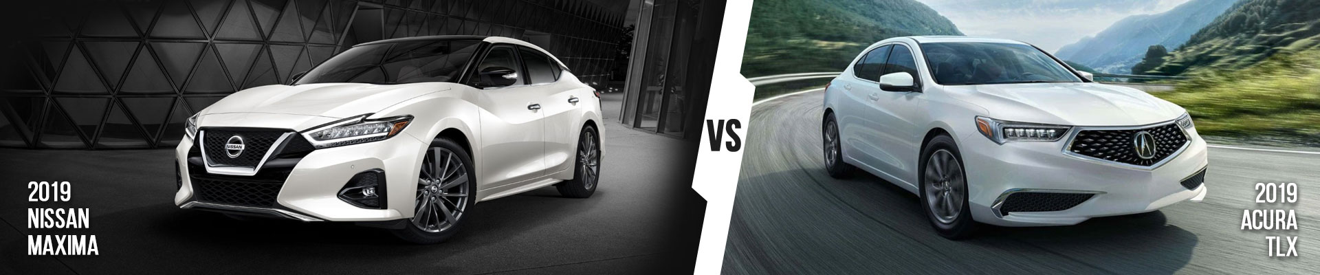 Examine The Nissan Maxima vs. Acura TLX In Fort Myers, Florida