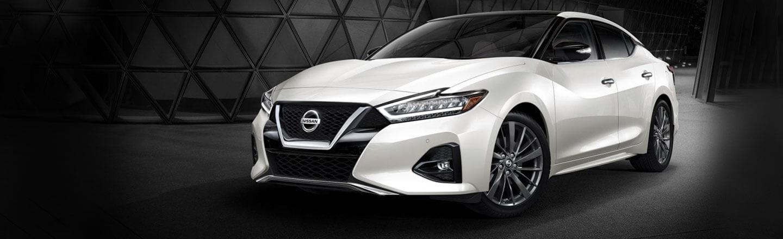 new 2019 Nissan Maxima Covington, LA