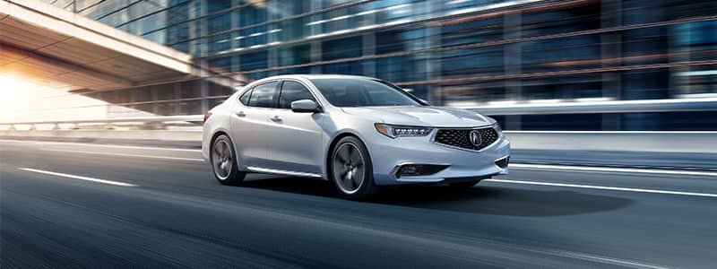 2019 TLX 5