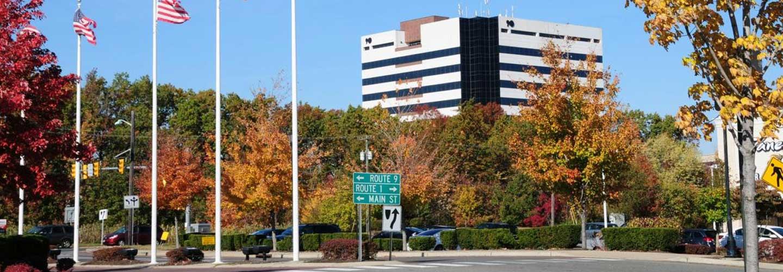 Shop New or Pre-Owned Honda near Woodbridge, NJ