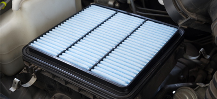 Engine & Cabin Air Filter Replacement