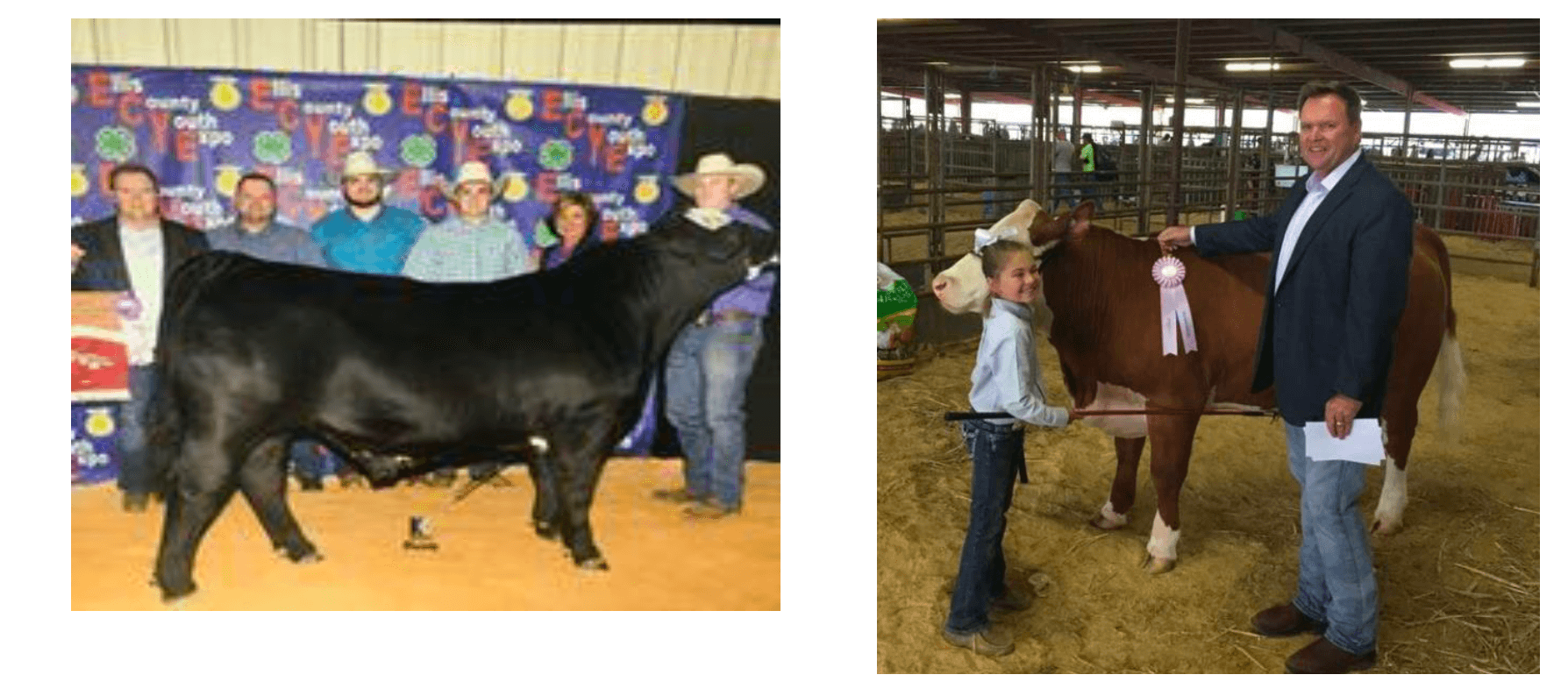 Ellis County Youth Expo