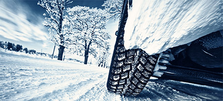 Genuine Toyota Winterization Special