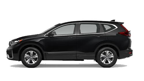 2019 Honda CR-V Blue Jellybean