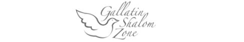 Shalom Zone Logo