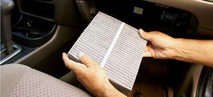 Cabin and Engine Air Filter Replacement