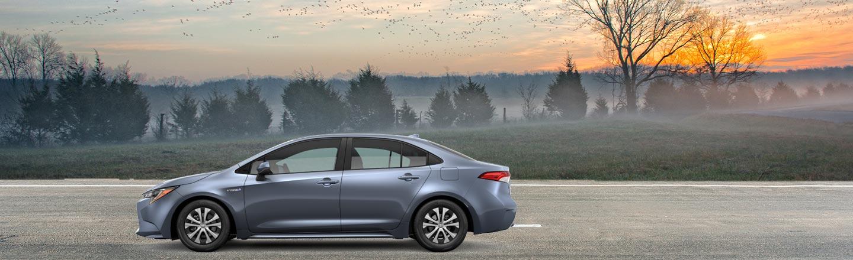 2020 Corolla Hybrid On Road