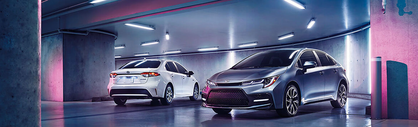 Experience the 2020 Toyota Corolla Compact Car in Venice, FL