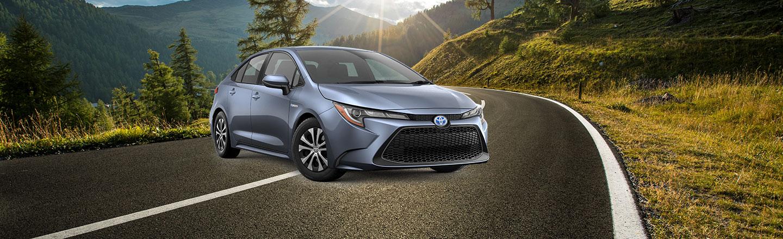 Discover the 2020 Toyota Corolla Hybrid in Venice, Florida