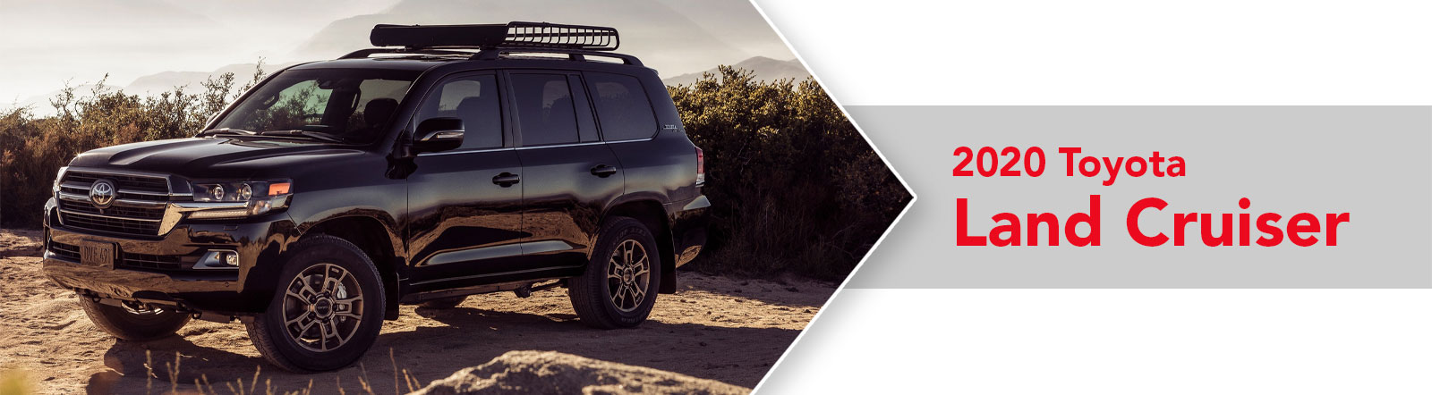All-New 2020 Toyota Land Cruiser For Sale in Metairie, LA