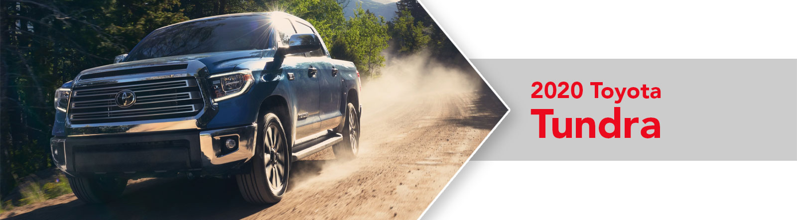 All-New 2020 Toyota Tundra For Sale in Metairie, LA