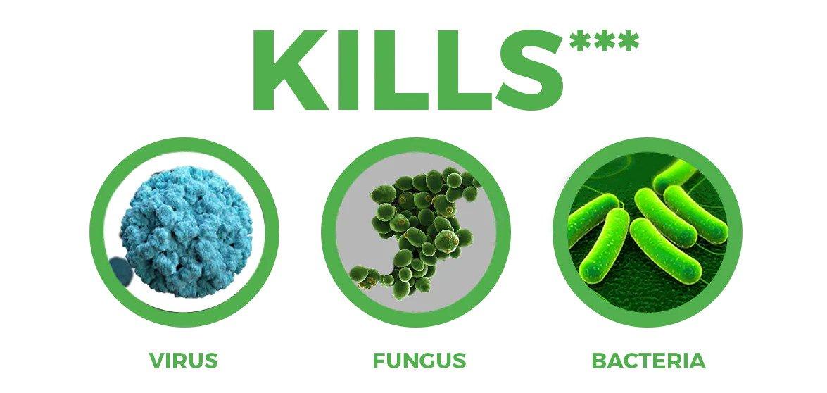 kills virus fungus bacteria