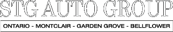 STG Auto Group logo