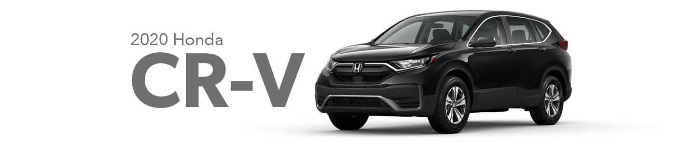 2019 Honda CR-V in Southwest Florida