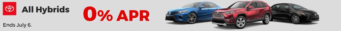 New Hybrid Models