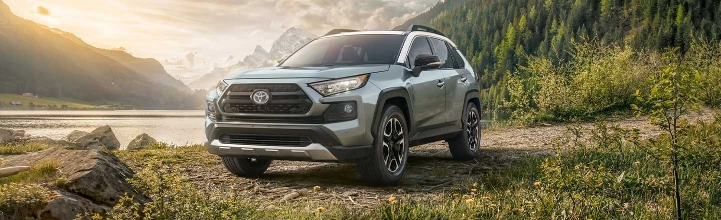 2019 Blue Exterior RAV4 at Carl Hogan Toyota