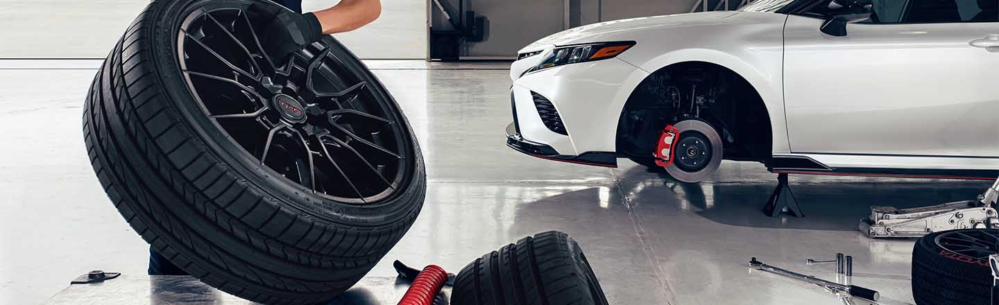 Tire Service For All Cars in the Tampa, Florida, Area