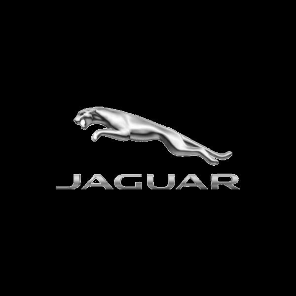 Shop Jaguar