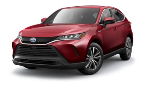 2021 Toyota Venza Jellybean