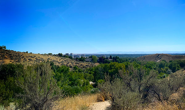 A blue sky and brush are part of the view of Boise, Idaho from the trail.