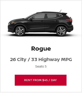 Rent a Rogue