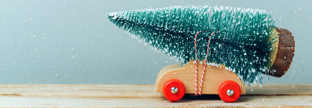 How to Safety Transport a Christmas Tree with Your Car
