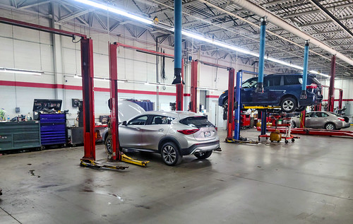Several cars up on lifts in a Toyota service center.