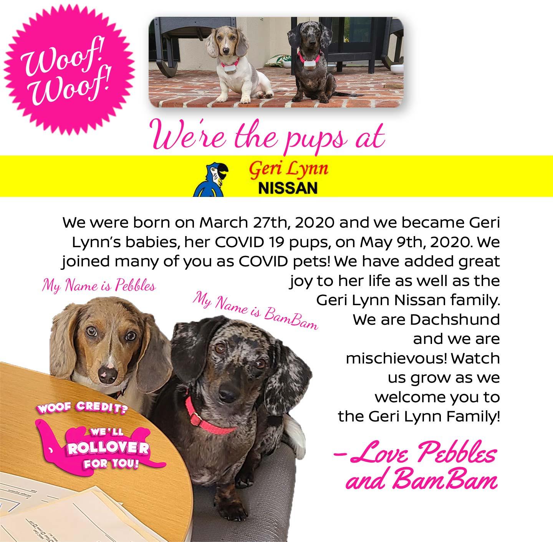 we are the pups at geri lynn nissan