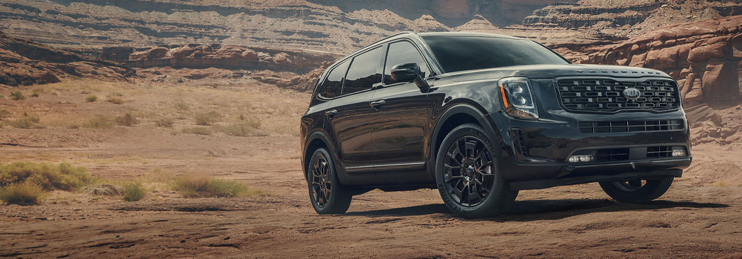What does the 2021 Kia Telluride look like?
