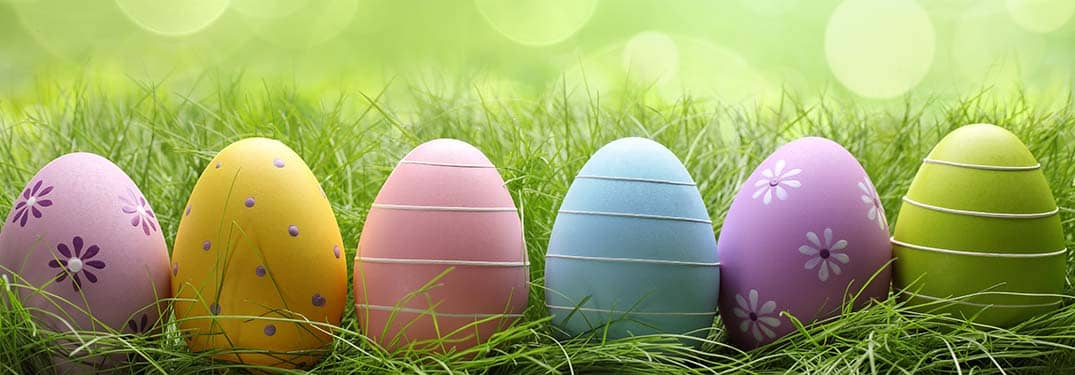 Easter events and activities Northshore