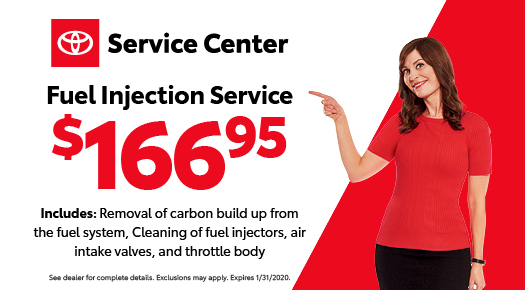 Fuel Injection Service