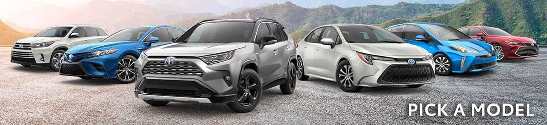 Toyota models at Lipton Toyota