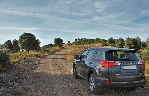 A backside view of a new Toyota RAV4 as it pauses in an ascent up a mountain.