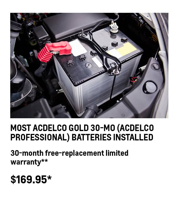 ACDelco Professional Battery