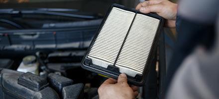 Cabin & Engine Air Filter
